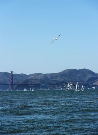 Trip to California, Part 1