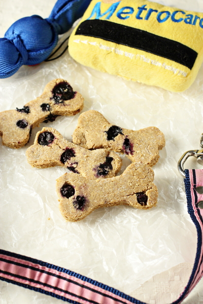 Several Homemade Blueberry Dog Treats with dog toys and a leash nearby.