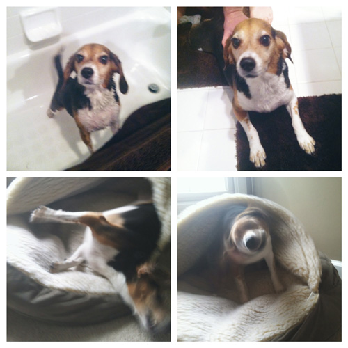 Emma bath time