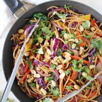 Rainbow Vegetable Lo Mein