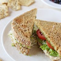 Hummus, Veggie and Pesto Sandwich