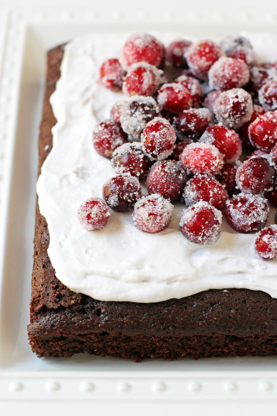 Chocolate Almond Olive Oil Cake on a white platter and topped with sugared cranberries.