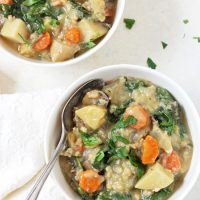 Slow Cooker Creamy Veggie & Wild Rice Soup